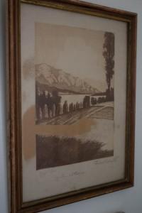 DSC_1882